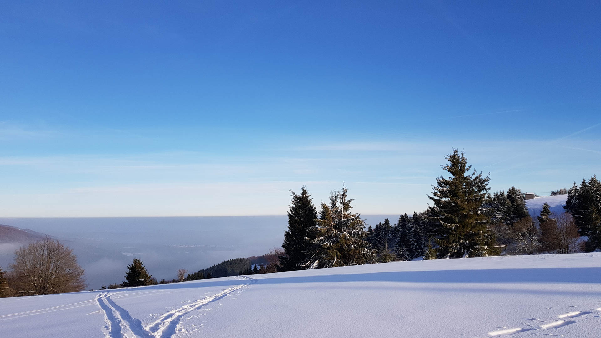Feuerberg_Winter_2019-02-06-129