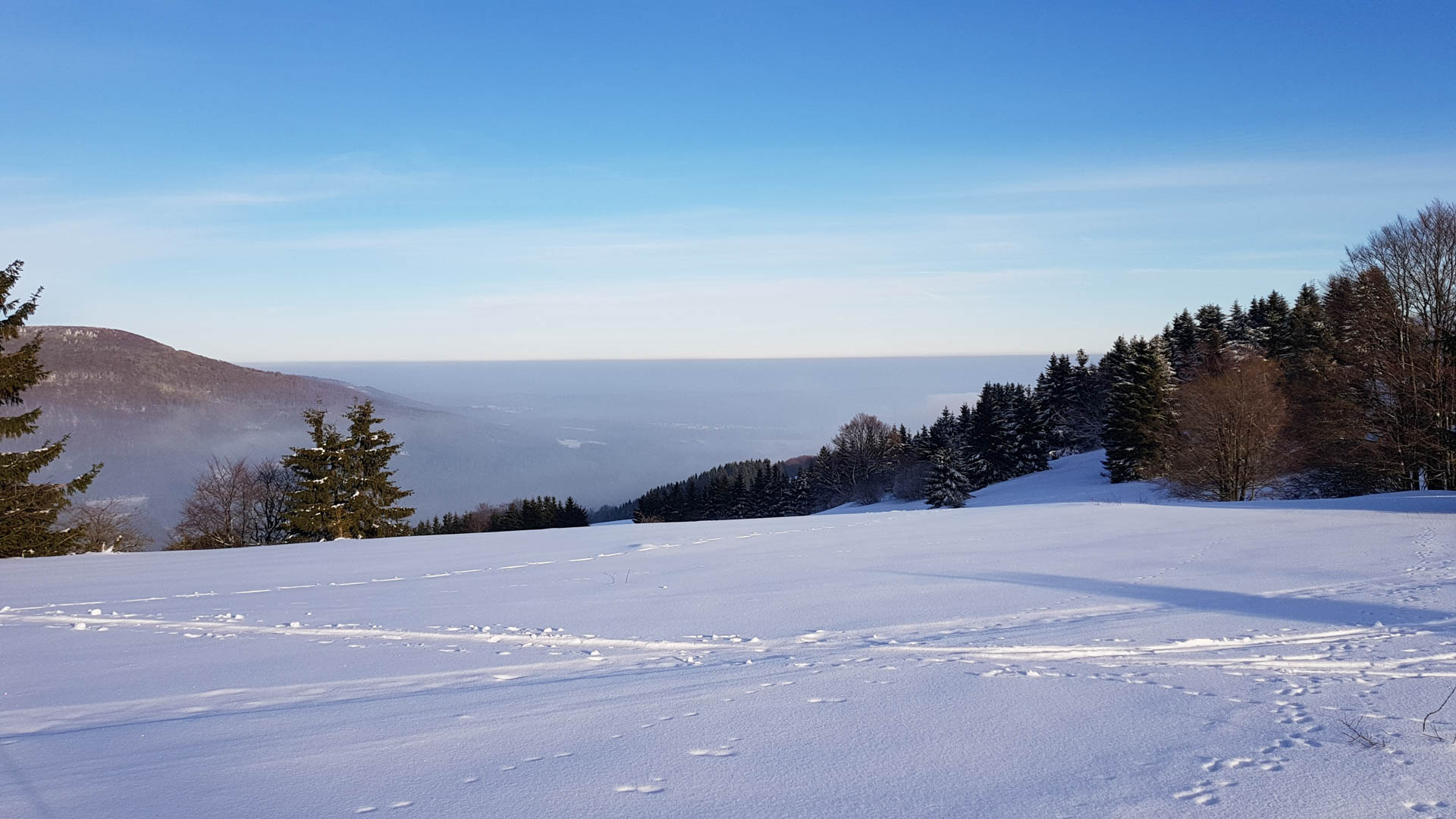 Feuerberg_Winter_2019-02-06-134
