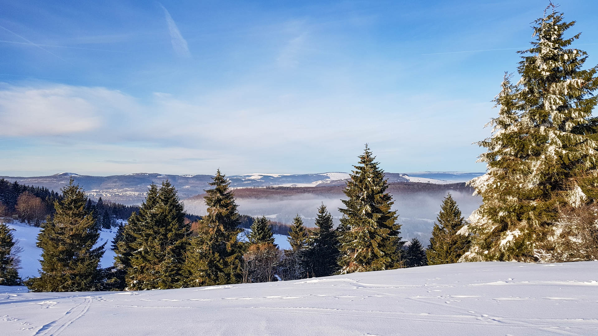 Feuerberg_Winter_2019-02-06-149