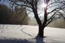 Feuerberg_Winter_2019-02-06-100