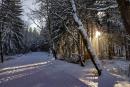 Feuerberg_Winter_2019-02-06-105