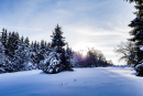 Feuerberg_Winter_2019-02-06-110