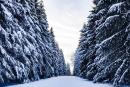Feuerberg_Winter_2019-02-06-111