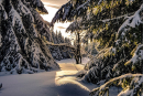 Feuerberg_Winter_2019-02-06-115
