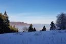 Feuerberg_Winter_2019-02-06-119