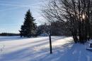 Feuerberg_Winter_2019-02-06-124