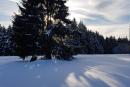 Feuerberg_Winter_2019-02-06-132