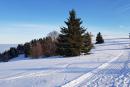 Feuerberg_Winter_2019-02-06-135