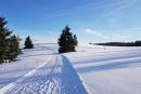 Feuerberg_Winter_2019-02-06-136