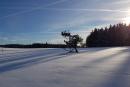 Feuerberg_Winter_2019-02-06-137