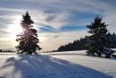Feuerberg_Winter_2019-02-06-141