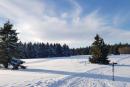 Feuerberg_Winter_2019-02-06-142