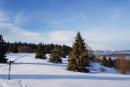Feuerberg_Winter_2019-02-06-143