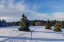 Feuerberg_Winter_2019-02-06-144