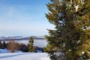 Feuerberg_Winter_2019-02-06-145