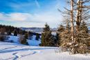 Feuerberg_Winter_2019-02-06-147