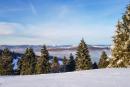 Feuerberg_Winter_2019-02-06-149