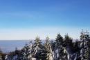 Feuerberg_Winter_2019-02-06-175
