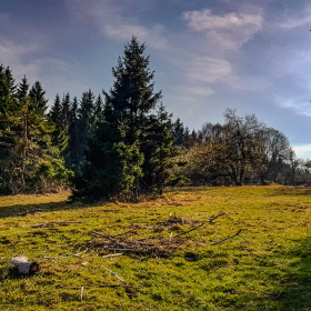 Feuerberg_April_2019-142
